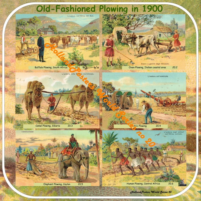 Old-Fashioned Plowing World  Wide HollandPosters World Series no 20 wiht Electric plowing